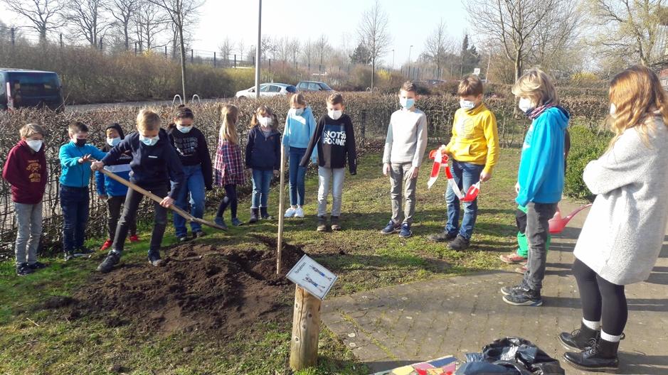 Die Klasse 4 Ams pflanzt im Garten hinter dem Gelben Haus einen ....