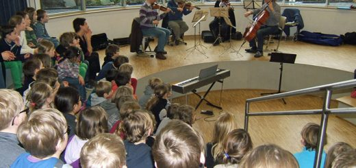 Orchestermusiker 2012 - Streicher