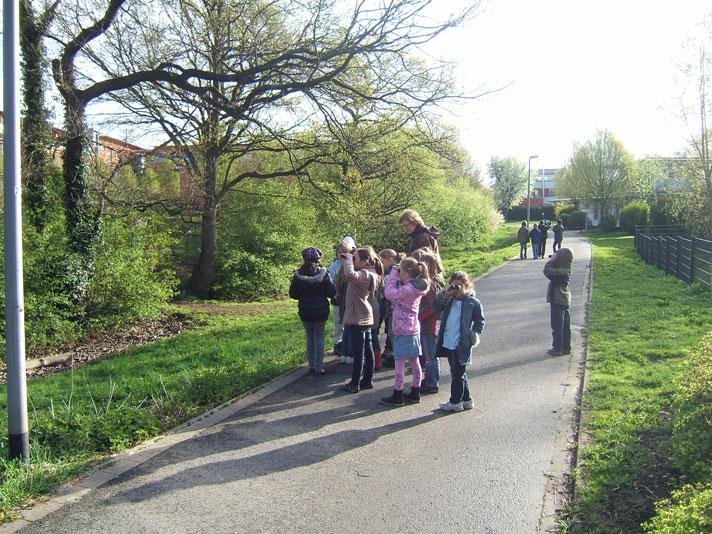 Frühlingsprojekt 2011 - Vögel beobachten